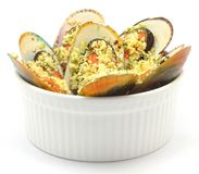 Baked Green Mussels. With Herbs Crumbed on white back ground Royalty Free Stock Photography