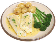 Baked Haddock with Vegetables Isolated Plate. Baked haddock fillets in a lemon and herb sauce with vegetables Royalty Free Stock Photos
