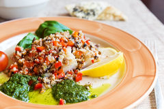 Baked halibut with vegetable garnish Royalty Free Stock Photo