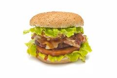 Baked hamburger Stock Image