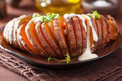 Baked hasselback potato with sour cream Stock Image