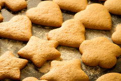 Baked homemade gingerbread cookies Stock Photos