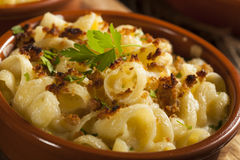 Baked Homemade Macaroni and Cheese Royalty Free Stock Photo