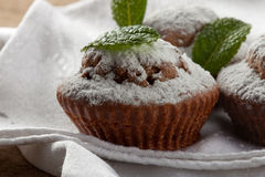 Baked homemade muffins. Baked homemade cupcakes with powdered sugar and mint on a fabric napkin Royalty Free Stock Image