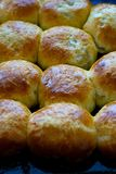 Baked hot buns. Sweet buns on a baking sheet