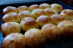 Baked hot buns. Sweet buns on a baking sheet.
