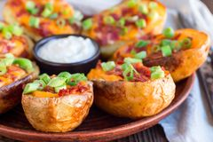 Baked loaded potato skins with cheddar cheese and bacon, garnish royalty free stock image