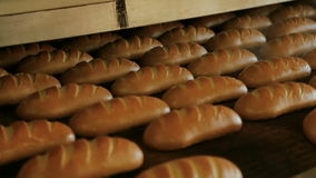 Baked loaf of bread in the bakery stock footage