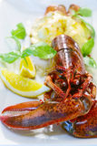 Baked lobster with cheese and lemon slices over white Stock Photo