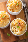 Baked macaroni with cheese Royalty Free Stock Images
