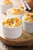 Baked macaroni with cheese Royalty Free Stock Photos