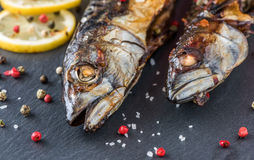 Baked Mackerel Fish with Herbs and Lemon on Stone Royalty Free Stock Images