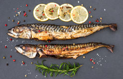 Baked Mackerel Fish with Herbs and Lemon on Stone Royalty Free Stock Photography