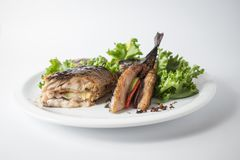 Baked mackerel with green salad and lemon on white plate.  stock photography