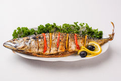 Baked mackerel in a plate. On a white background Royalty Free Stock Photo