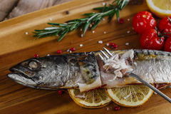 Baked mackerel with tomato Stock Photos