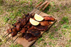 Baked meat on green meadow. Ready for eating Royalty Free Stock Photos