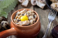 Baked meat in a pot with mushrooms and sour cream sauce stock photography