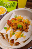 Baked meat tortilla with cheddar cheese Stock Photo