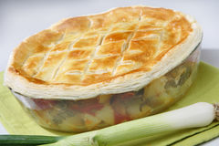 Baked meat and vegetable pie Royalty Free Stock Image
