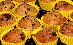 Baked muffin. On the plate Stock Image