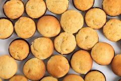 Baked muffins closeup. Royalty Free Stock Photos