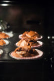 Baked muffins through oven glass Royalty Free Stock Images