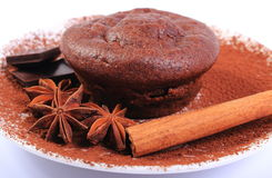 Baked muffins, star anise, cinnamon and chocolate Stock Photography