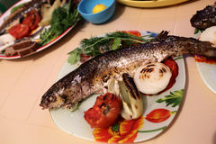 Baked mullet Stock Photography