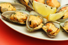 Baked mussels Stock Image