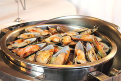 Baked mussels with cheese Stock Images