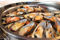 Baked mussels with cheese Royalty Free Stock Photo