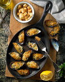 Baked Mussels. Delicious baked mussels on an iron skillet with breadcrumbs, lemon, parsley, garlic, and olive oil Royalty Free Stock Photography