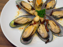 Baked mussels garlic Royalty Free Stock Image