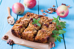 Baked oatmeal with apples royalty free stock photo