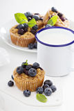 Baked oatmeal muffins with blueberry Royalty Free Stock Image