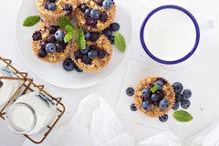 Baked oatmeal muffins with blueberry Royalty Free Stock Photography