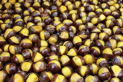 Baked open Chestnut background Stock Photography