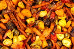 Baked in oven mix of vegetables. view from top Stock Images