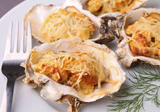 Baked oyster Royalty Free Stock Image