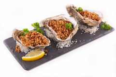 Baked oyster Stock Photography