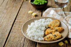 Baked Parmesan Parsley Crusted Chicken with rice Royalty Free Stock Images