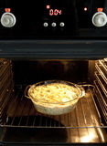 Baked pasta with broccoli Stock Photography
