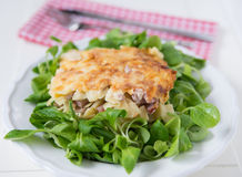 Baked Pasta Dish Royalty Free Stock Images