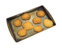 Baked peanut butter cookies Stock Images
