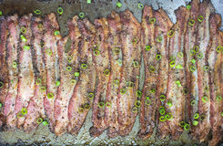 Baked Peppercorn Bacon in in baking pan Royalty Free Stock Photography