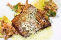 Baked perch fillet with sauce and puree on white plate. Close up image with selective focus stock photos