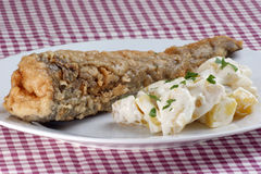 baked perch with potato salad on a plate Royalty Free Stock Images