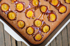 Baked plum cake Stock Images
