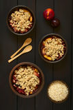 Baked Plum and Nectarine Crumbles Stock Photography